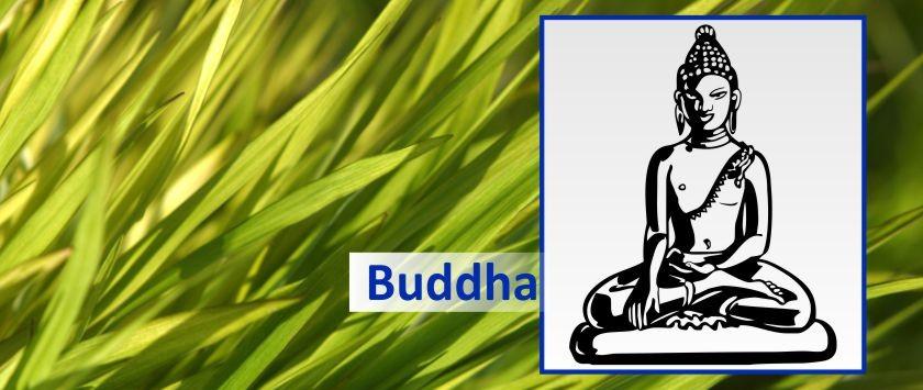 Buddha Aufkleber Glücksbuddha